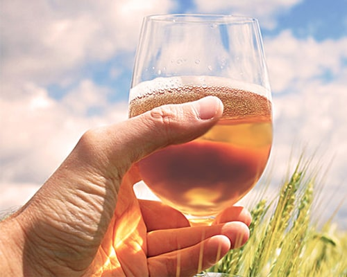 The characteristics and brewing technology of wheat beer