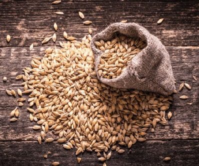 How to Identify the malt in beer brewing process?