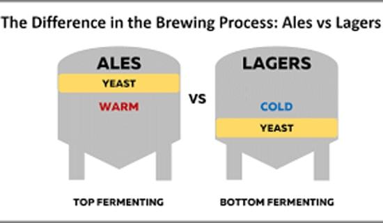 In the brewing process of beer, why top fermentation yeast has great influence on beer taste, while bottom fermentation has little influence on beer taste?