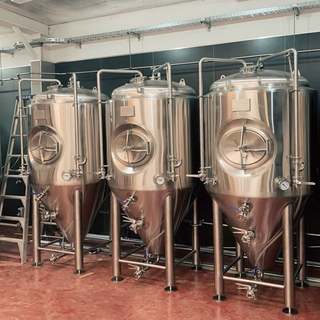 1000L Conical Insulated Food Grade Standard SUS304/316 Isobaric Dimple Jacket Beer Fermenation Unitank
